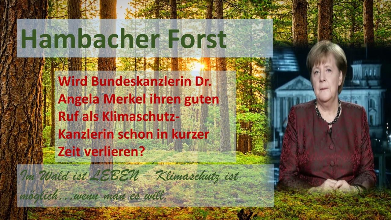 Hambacher Forst: Wird Bundeskanzlerin Dr. Angela Merkel ihren guten Ruf als Klimaschutz-Kanzlerin verlieren?
