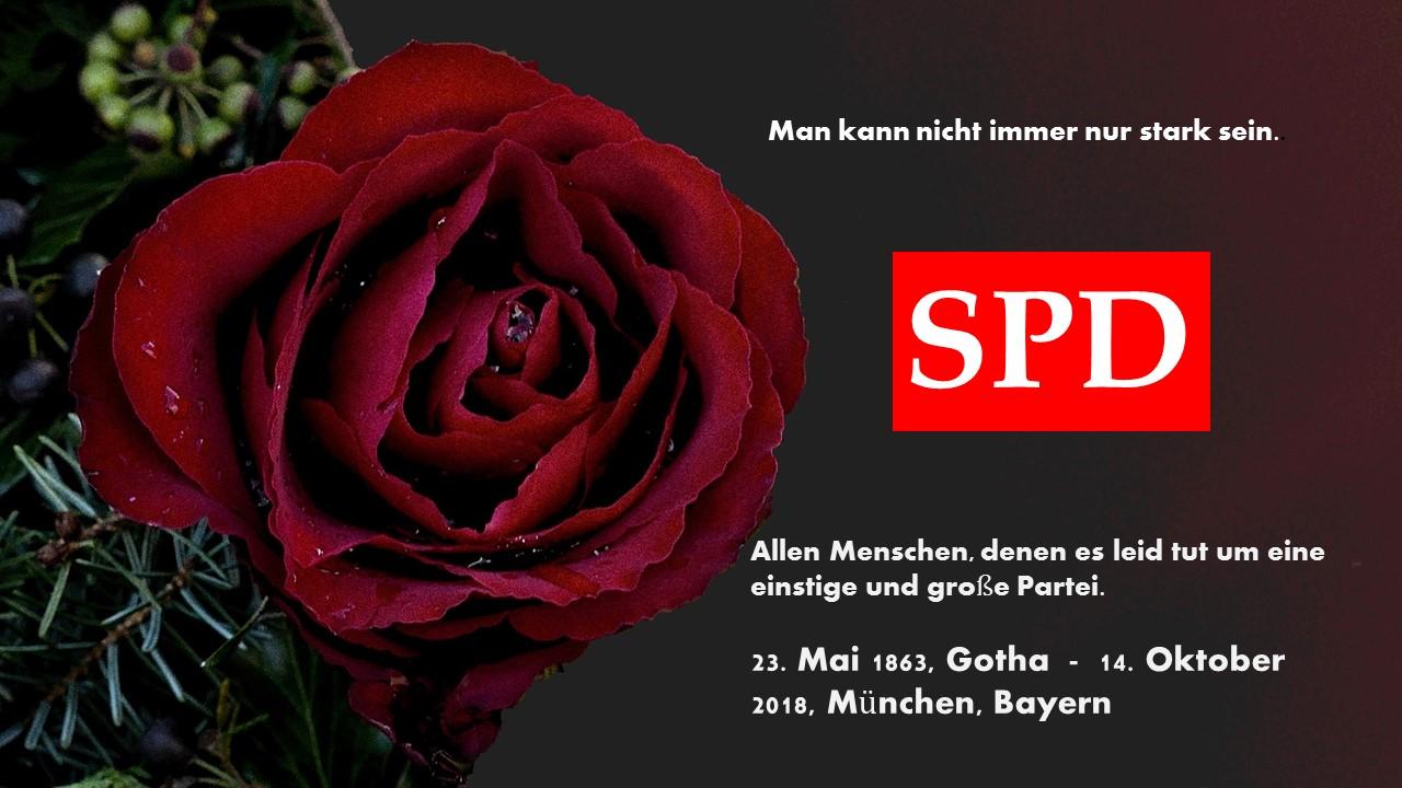 Allen Freunden, die um die SPD trauern